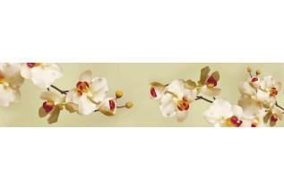 SP-102 žltá orchidea